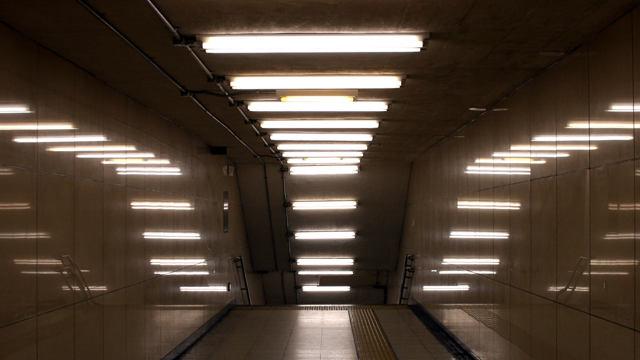 Лампа люминесцентная g13: цоколь, какие бывают, характеристики
