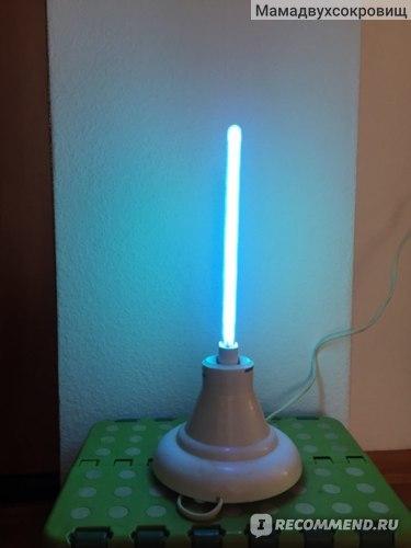 Помогает ли кварцевая лампа против плесени и грибка