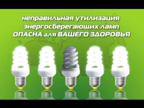 Утилизация энергосберегающих ламп: куда и как сдать