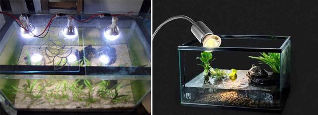 Подсветка для аквариума: требования и процесс изготовления
