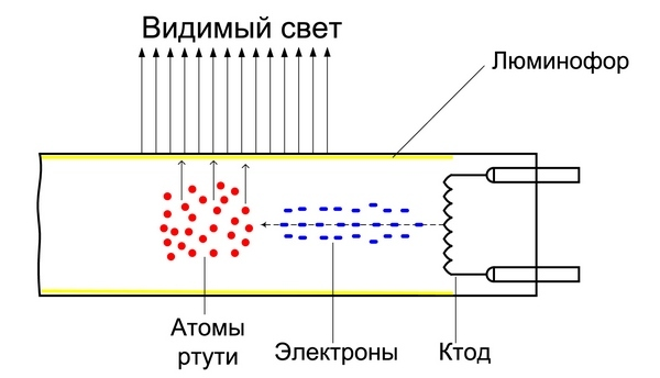 Как устроена лампа клл (компактная люминесцентная лампа)