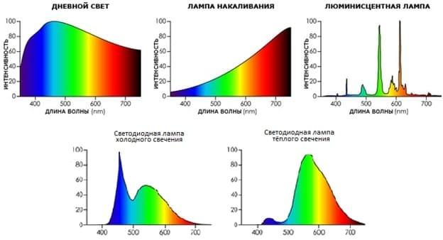 Вредны ли фитолампы для человека